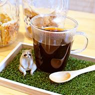 ドリップコーヒー PREMIUM CULI (hot/ice)
